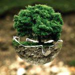 Comment protéger efficacement la planète ?