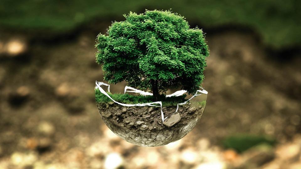 écologie environnement