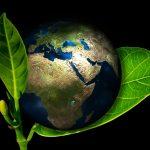 Les véhicules écologiques un début de solution pour un meilleur environnement?